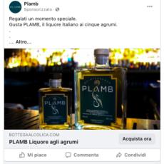 Gestione Social Plamb